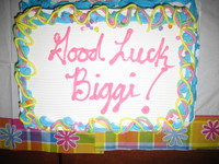Highlight for Album: Biggi's farewell cake party in lab June 2007